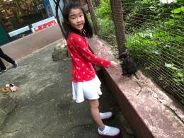 Rabbit galore at Kuala Lumpur towers mini zoo