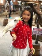 Kuala Lumpur towers mini zoo