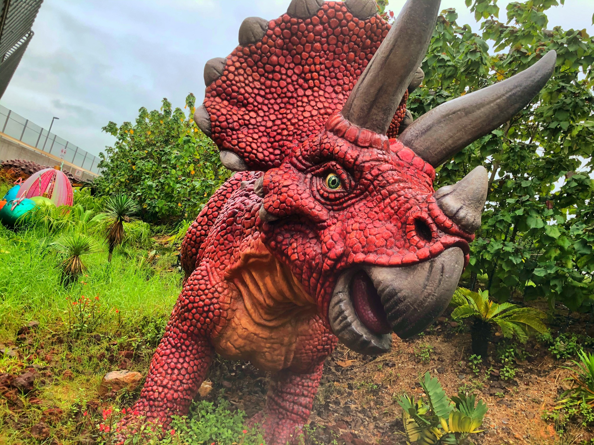 Triceratops at changi jurassic mile