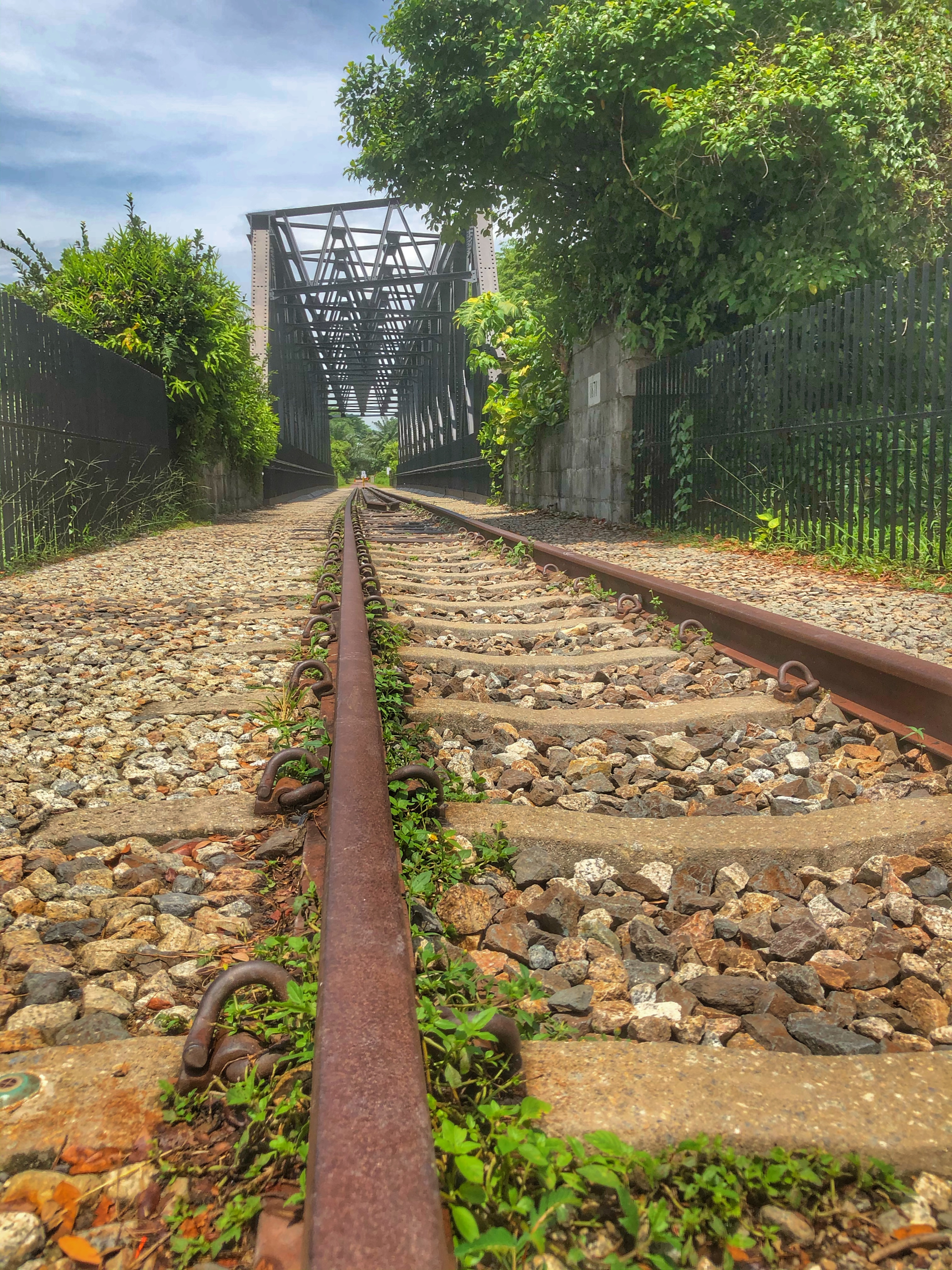 rail corridor bukit timah bridge